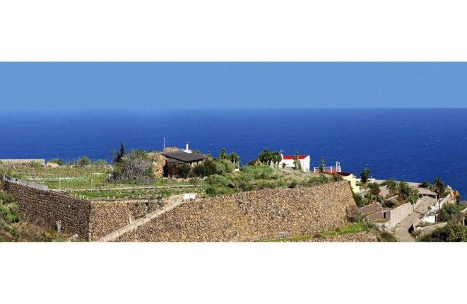 Finca with guest house in a very good location...