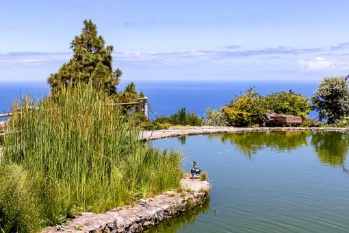 Beeindruckender Garten mit Teich