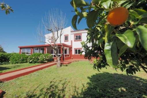 villa in La Esperanza/Tenerife for sale