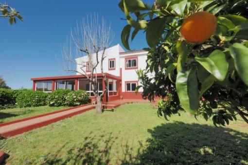 villa in La Esperanza/Tenerife