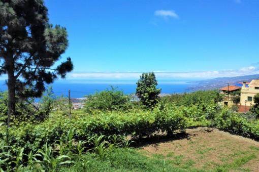 Dreamlike sea views