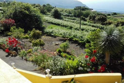 Access to the wonderful garden