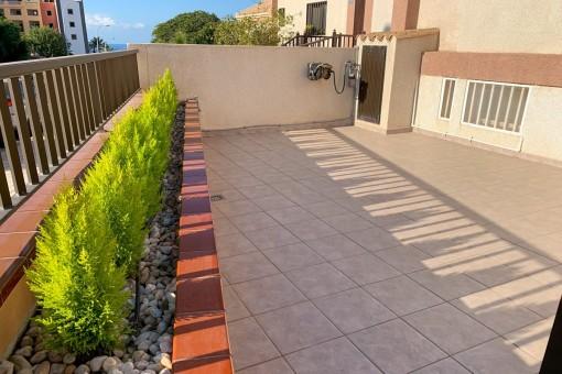 Sunny terrace of the house