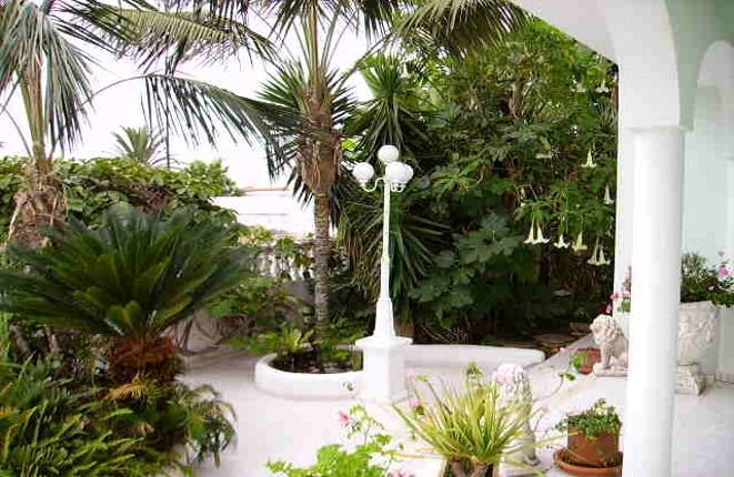 Romantic landscape garden