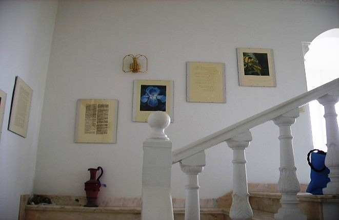 Pictures on the wall through the marble stairs
