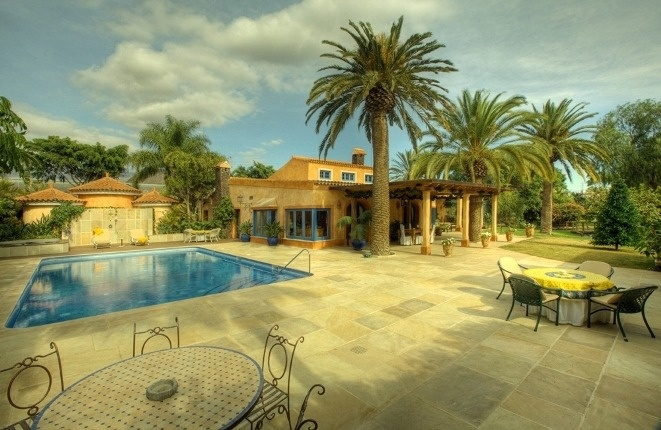 The main terrace and the pool in front of the villa with majestic palm trees