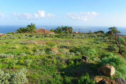 Prestigious large plot with ocean view