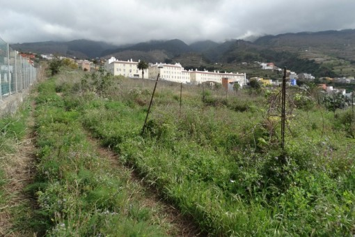Plenty of room for garden or organic farming