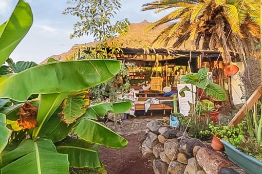 Small garden lodge
