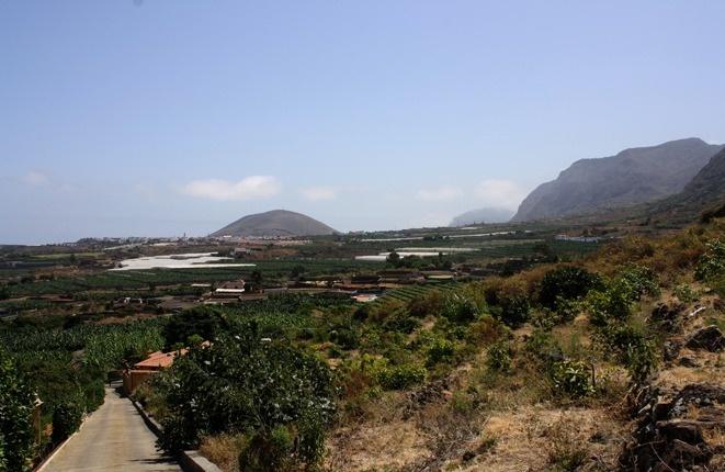 plot in Buenavista del Norte